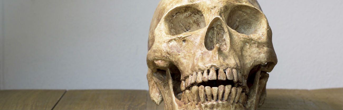 How Modern Dental Implants Came To Be