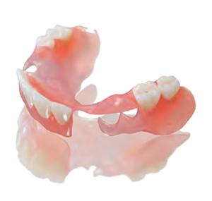SunFlex® Bilateral Partial Denture